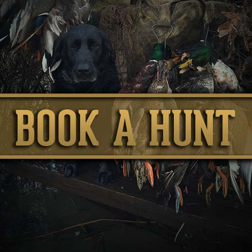 Book your Duck Hunt